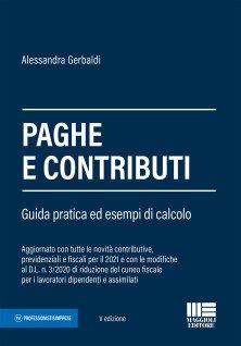 Paghe e contributi guida pratica