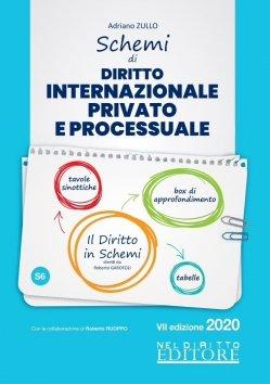 schemi diritto internazionale