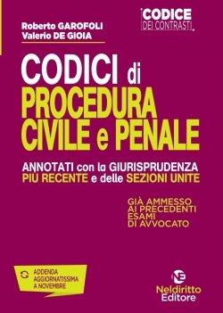 codice procedura penale e civile giurisprudenza recente