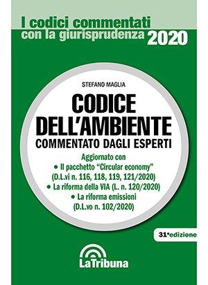 codice ambiente commentato 2020