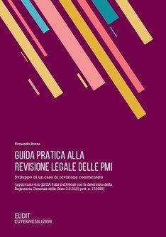 guida revisione legale PMI